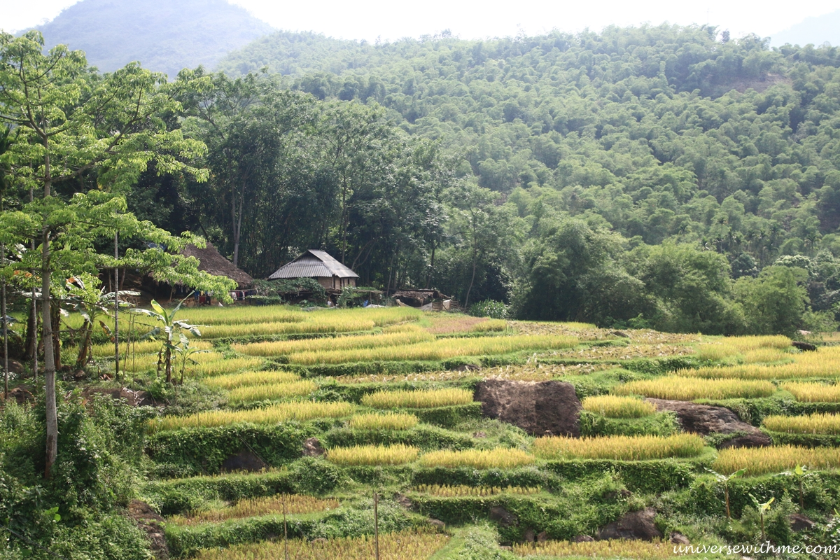 Vietnam_081