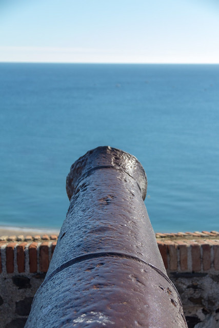 cannon views