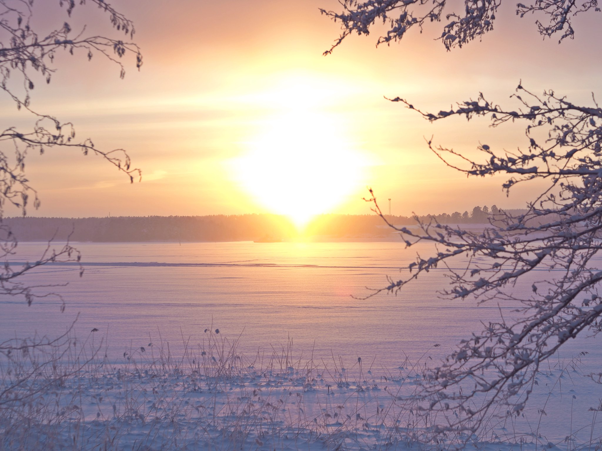 winter sunset finland nature