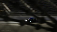 #10 WTR Rolex24 Working the Night