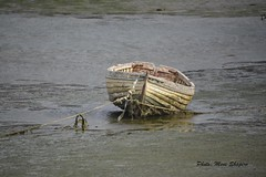 Boat Port Howard