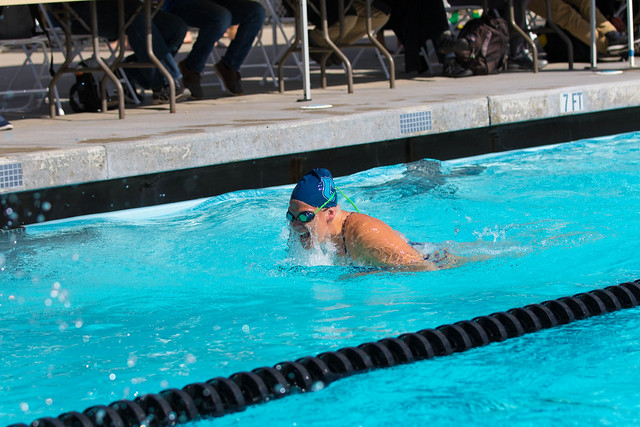 Variety of Boys &Girls Swim Dive Action pictures