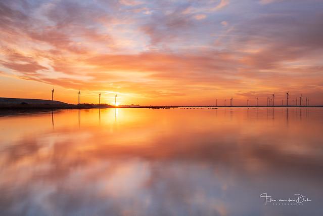 Sunrise Power