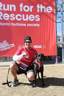 Run for the Rescues 2019