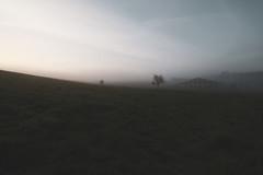 brouillard sur Rosnoën