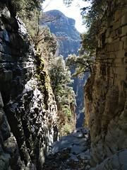 Canyons secs en hiver - Photo of Saint-Antonin