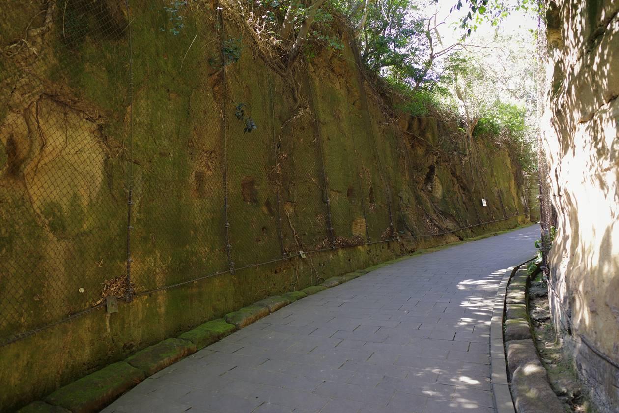 猿島・散策コース