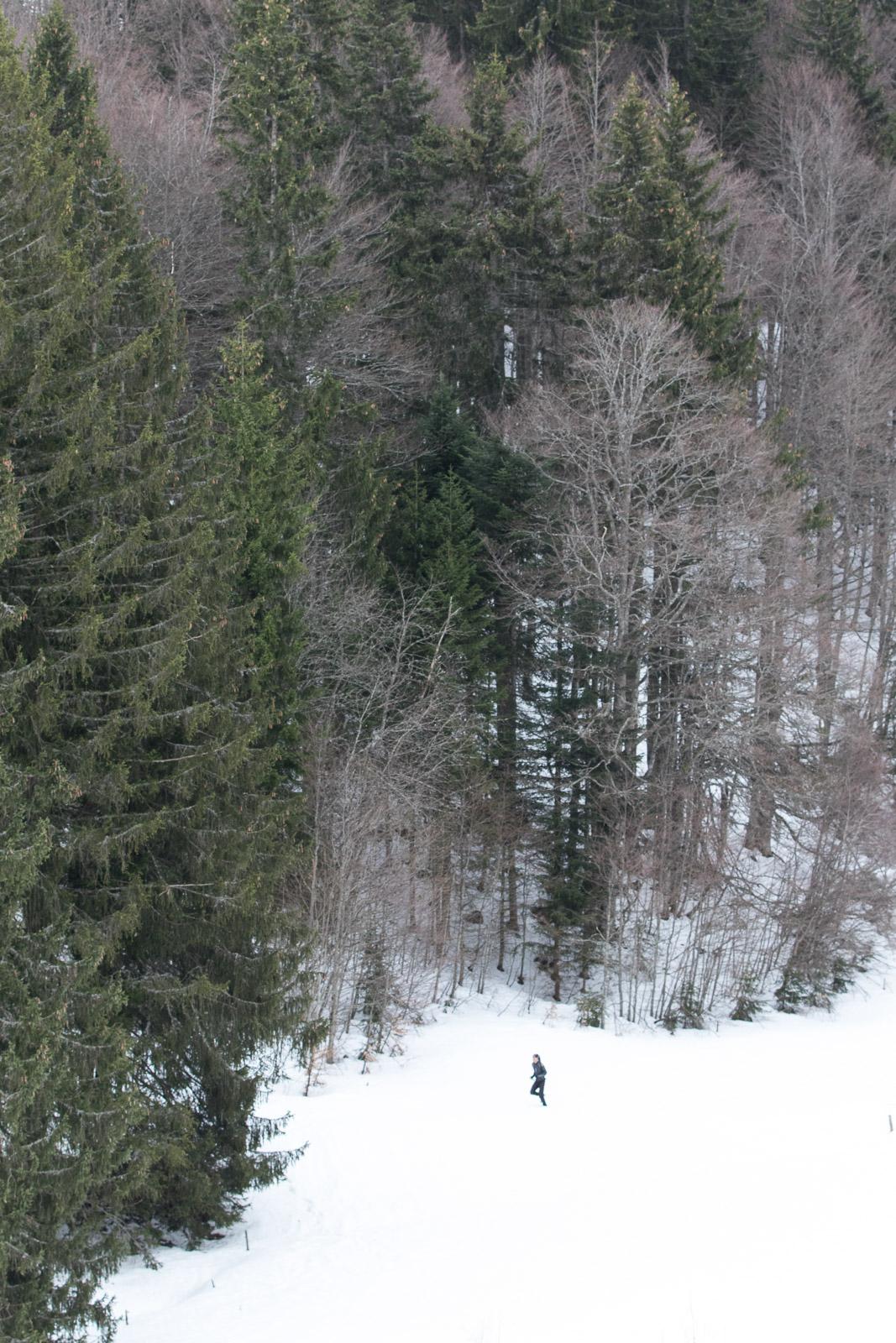 DSN Entrainement Ski Raquettes (85)