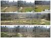 Photo:【12年振りのフォローアップ調査】 By 自然再生と自然保護区のための基金