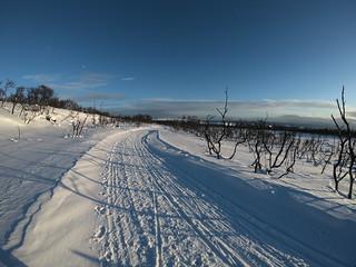 TVL trail