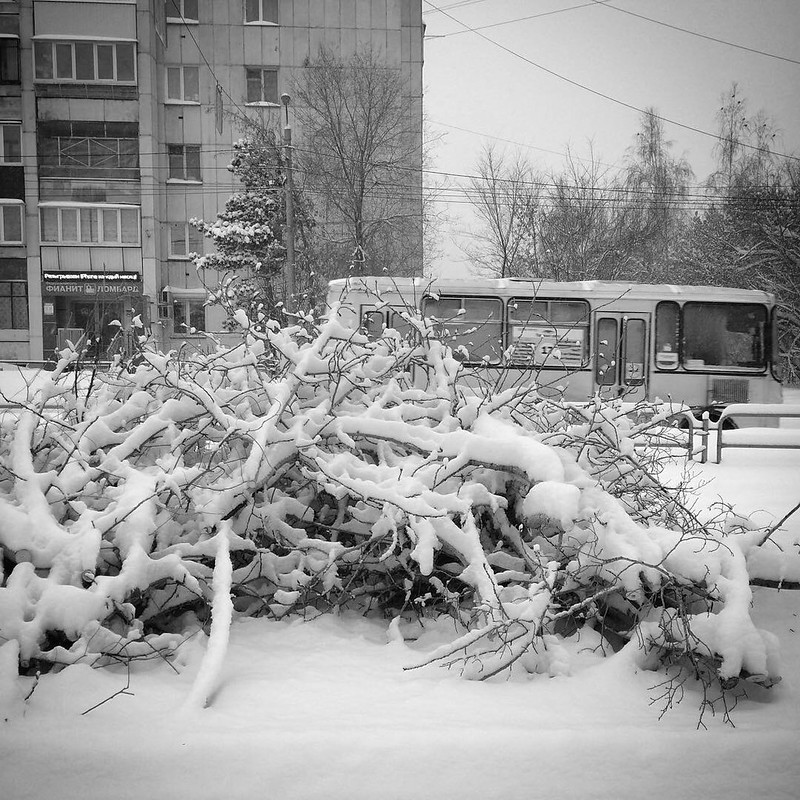 Февральский посёлок 2018 года