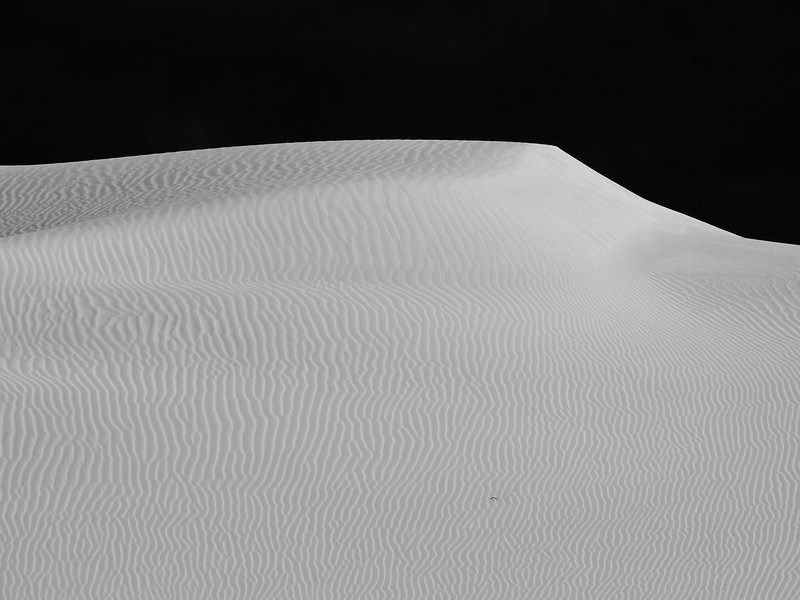 Bilbunya Dunes ( EUCLA, WA, Australia)