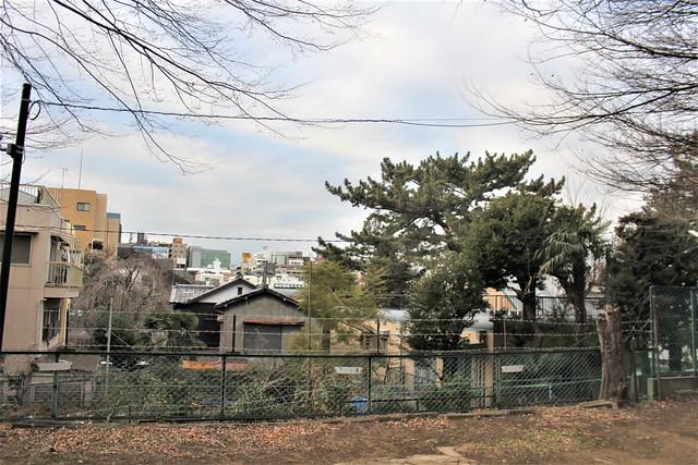 shinjukusuwa029