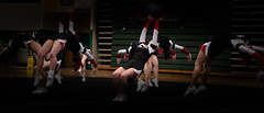 PHHS Cheer Districts 2019-10