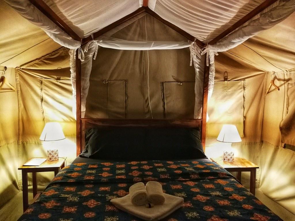 The tent, Blue Monkey Guesthouse, Entebbe