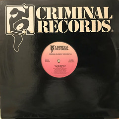CRIMINAL ELEMENT ORCHESTRA:PUT THE NEEDLE TO THE RECORD(JACKET A)