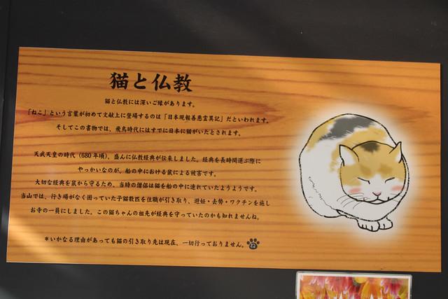 shimotsukedaishi018