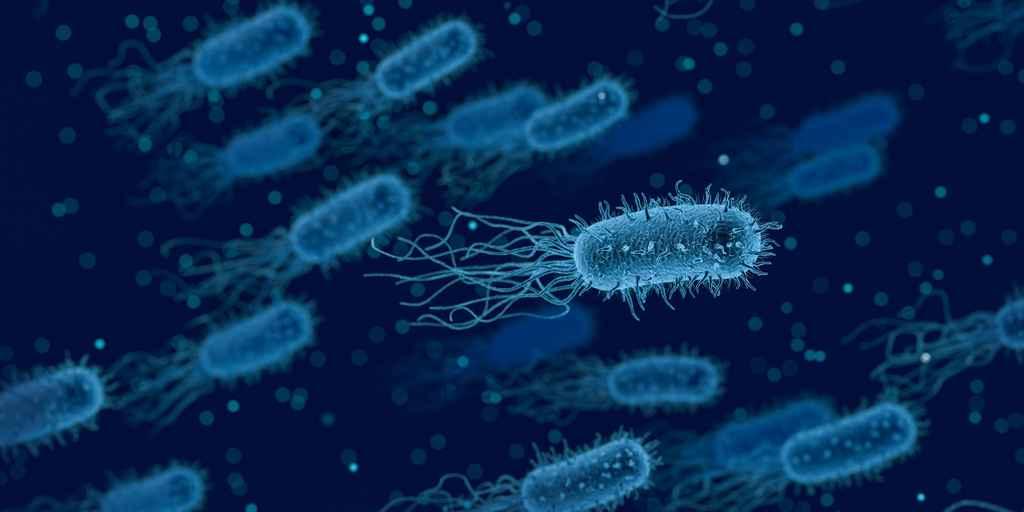 Surveiller un élément de la croissance bactérienne