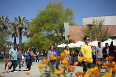 Welcome to CSUF Day 2019