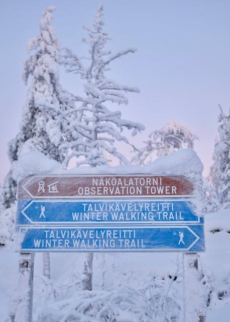 Ounasvaaran talvikävelyreitti