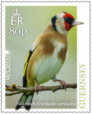 Guernsey - National Birds: Goldfinch, EUROPA 2019 (April 1, 2019)