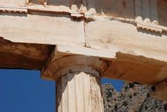 Grecia. Delfos. Santuario de Atenea Pronaia (18)