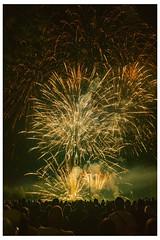 I wish You HaPPy New Year 2019...! izakigur No. 1663.