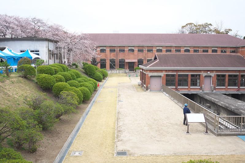 三河島水再生センター さくら鑑賞会