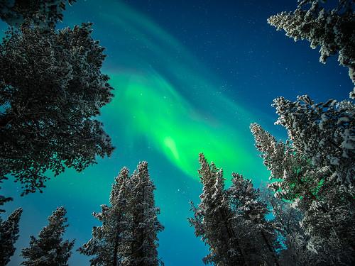 The Aurora Borealis - Ivalo, Lapland - Travel photography