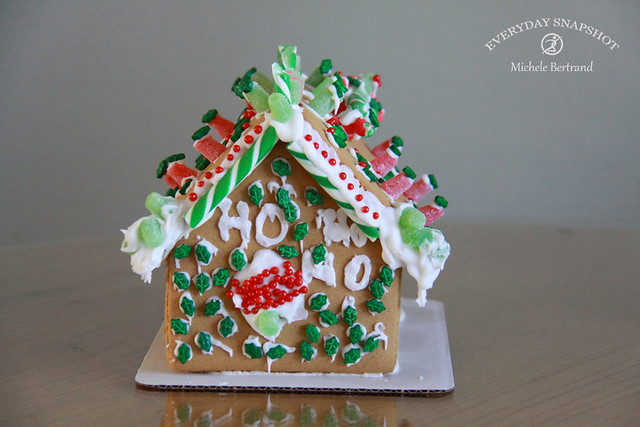 Gingerbread Houses (8)