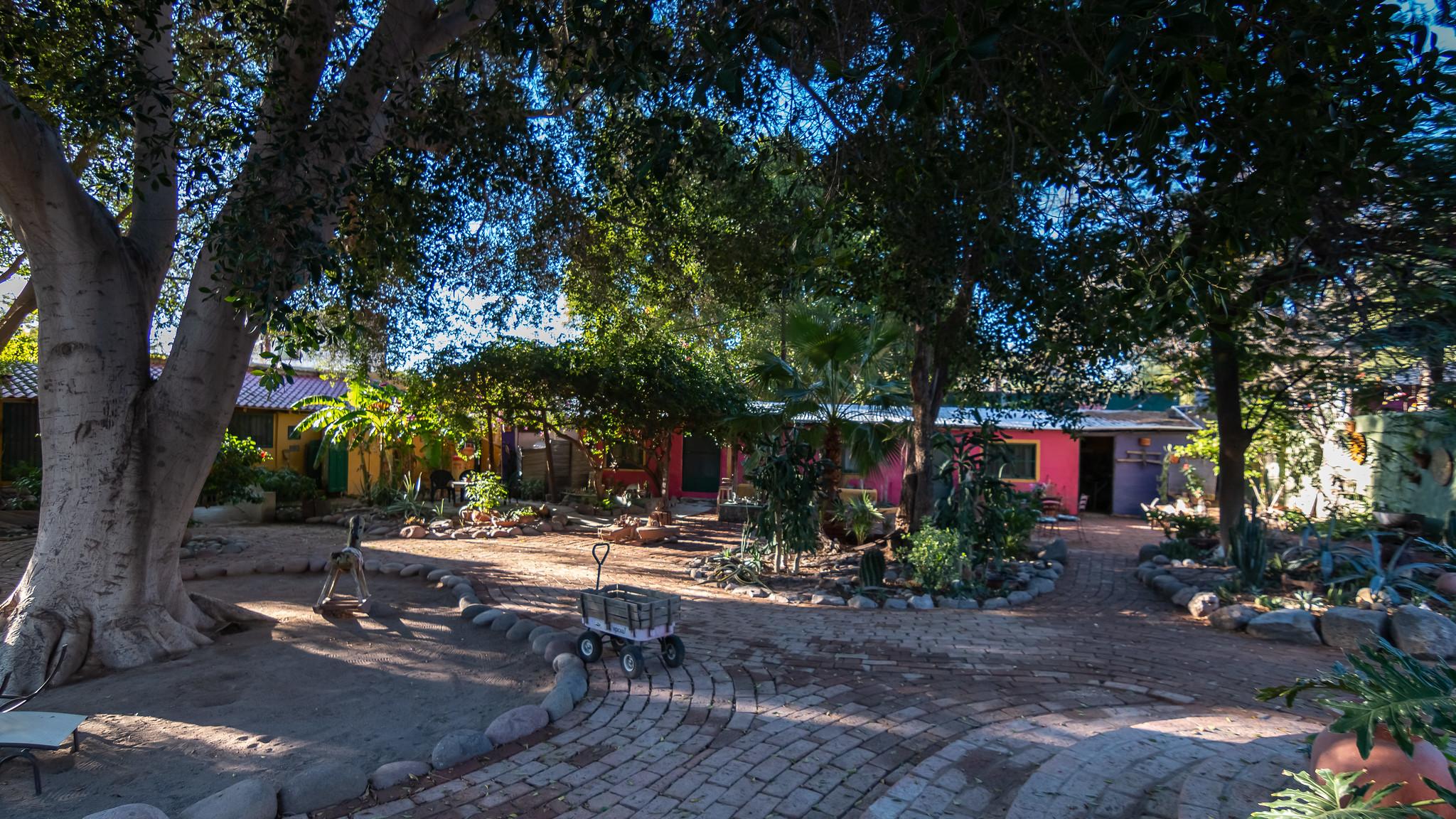 San Ignacio - Basse-Californie du Sud - [Mexique]