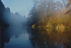 Foggy morning at Winkwell