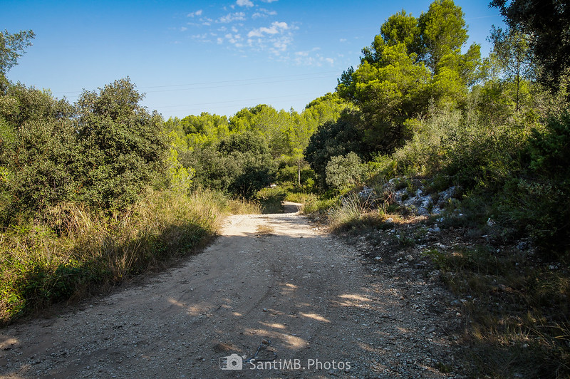 Camino de la Font del Llop a La Torreta