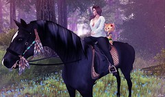 Ana and Ari riding Ladybird
