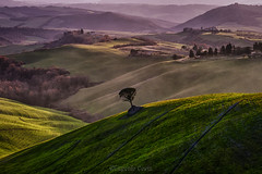 La campagna toscana by Eugenio Costa / The Tuscan countryside