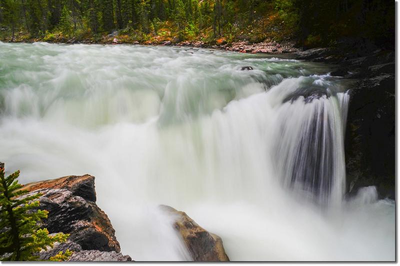 Sunwapta Falls  (7)