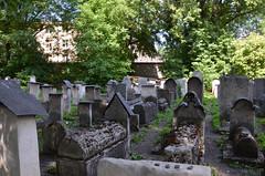 Kraków-Kazimierz, Synagoga i Cmentarz Remu