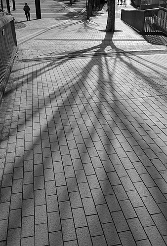 soft shadow