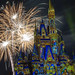20190109 WDW MK Happily Ever After-59.jpg
