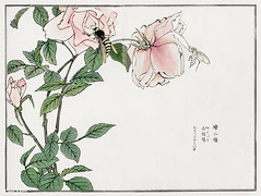 Bees and Flowers illustration from Churui Gafu (1910) by Morimot