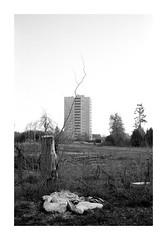 Vorstadt 01