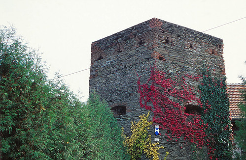 Old Town Wall - Schlaining