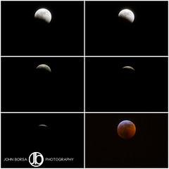 Blood Wolf Moon (1).jpg