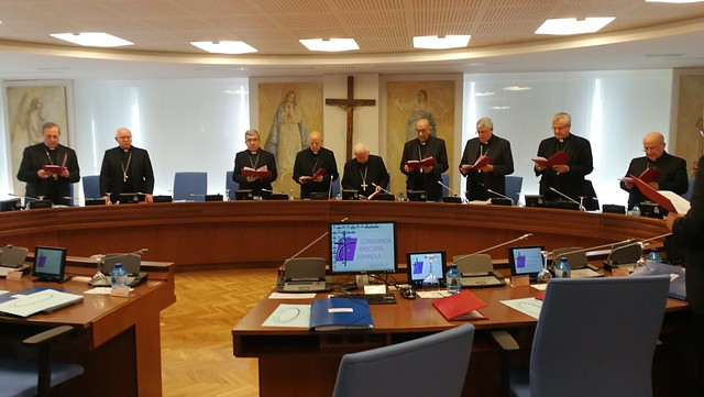 Comisión Permanente (febrero 2019)