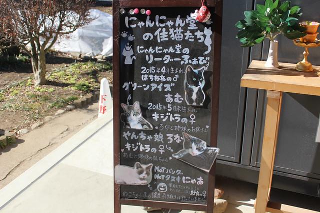 shimotsukedaishi016