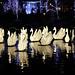 Tivoli Swans Front by Tom_Jones7