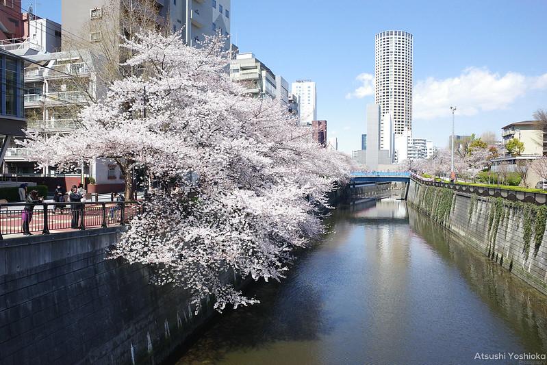 RICOH GR III in Tokyo