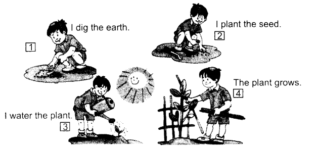 NCERT Solutions for Class 1 English Chapter 12 Our Tree 3