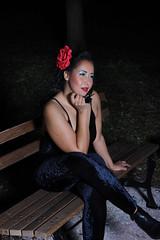 Red Flower on a Dark Night