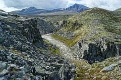 In Rondane Nasjionalpark